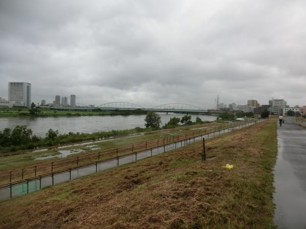 CIMG9396台風来たるの多摩川の状況